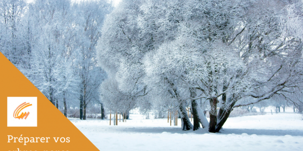Préparez vos arbres, parcs et jardins pour l'hiver